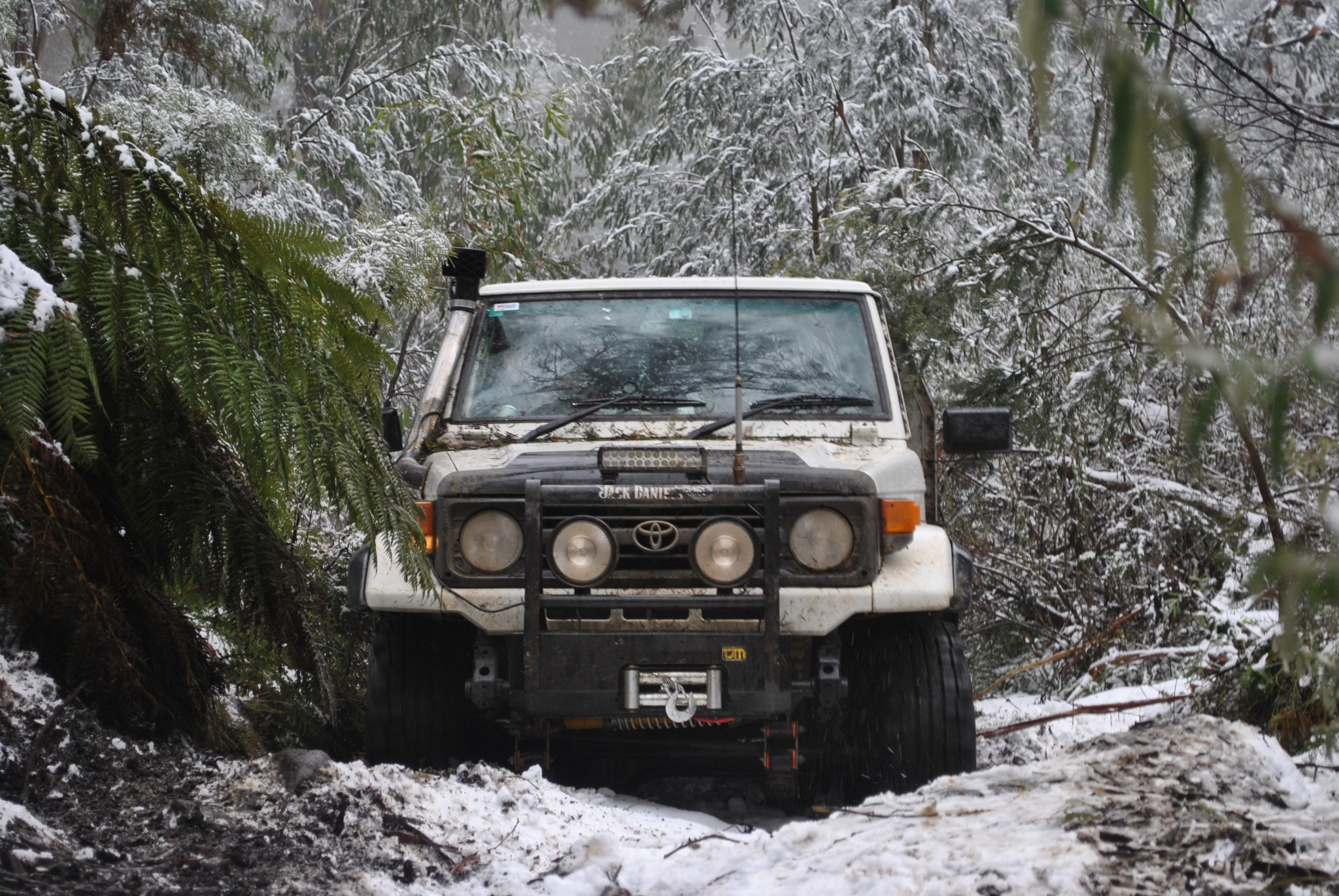SNOW DRIVING TIPS FOR BEGINNERS